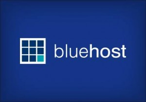 The official Bluehost logo